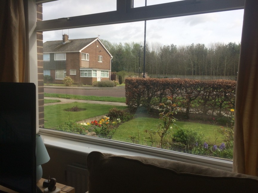 Window Repair In Houghton After