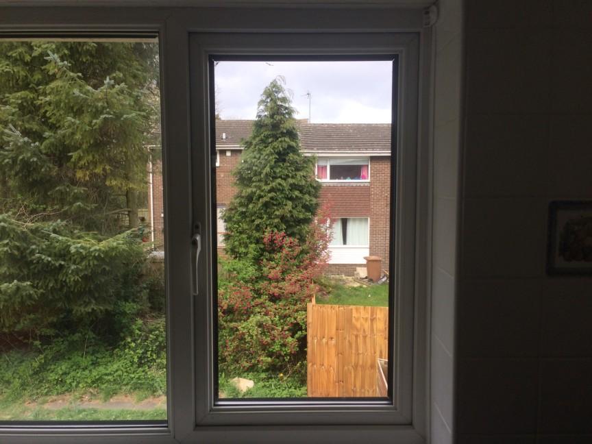 Window Repair Washington After